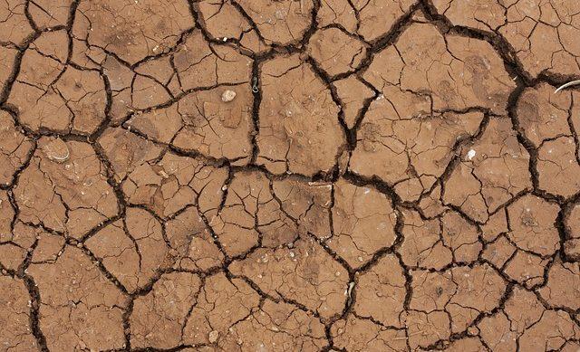 Sécheresse 2018 – demande de reconnaissance de catastrophe naturelle